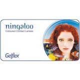Цветные линзы Ningaloo (2-х тоновые) (2 линзы)