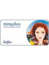 Цветные линзы Ningaloo (2-х тоновые) 2 линзы (1 пара)